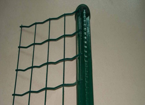 PVC Holland Wire Netting BD-02