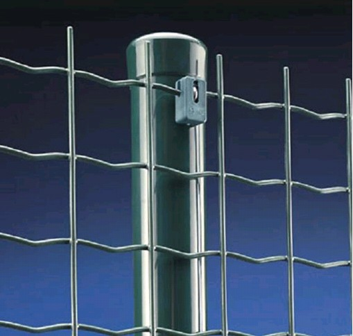 Holland Wire Mesh Fence BD-04