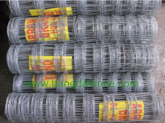 Knotted Wire Mesh Fence BD-02